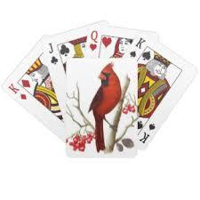 bird cards zazzle