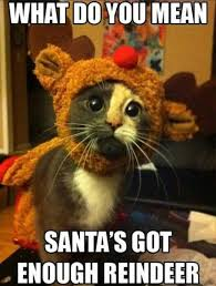Enough Meme - animal memes santa has enough funny memes