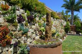 How To Make A Succulent Wall Garden by Vertical Succulent Garden Saves Space Looks Great