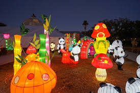 garden of wonder china lights at city park