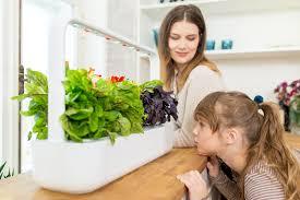 the smart garden summer break u2013 click u0026 grow