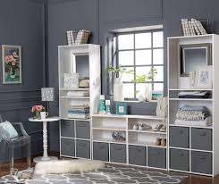 Systembuild Cabinets Ameriwood System Build White Cube Organizers Big Lots