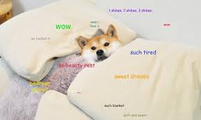 Create Your Own Doge Meme - what is doge technology the guardian