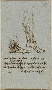 214 best leonardo da vinci images on pinterest drawings anatomy