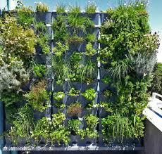 What Is Urban Gardening Chef Chakall Minigarden Uk