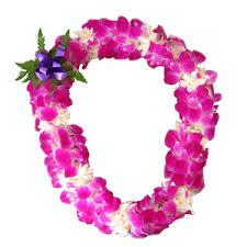 hawaiian leis orchid with tuberose the hawaiian company