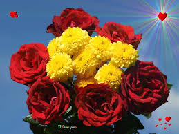 online florist real flowers is one of the leading online florist shops that