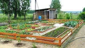 Small Vegetable Garden Design Ideas Small Vegetable Garden Layout Large Vegetable Garden Design Ideas