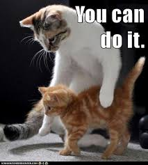 Meme You Can Do It - growth mindset memes you can do it growth mindset memes