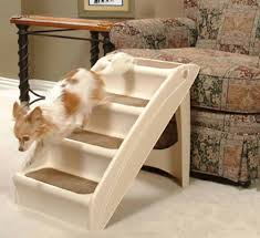 the best steps and ramps for small dogs