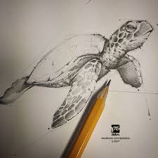 20170130 turtle sketch psdelux by psdeluxe on deviantart