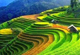 the best time of year to visit and trekking sapa hanoi