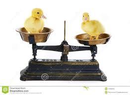 Ducks Unlimited Weathervane Duck Scale Stock Photo Image 12665930