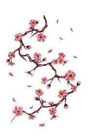 cherry tree branch by doloreslunasa on deviantart