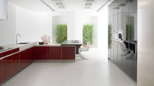 modern exotic kitchen decorated with aluminium composite panel
