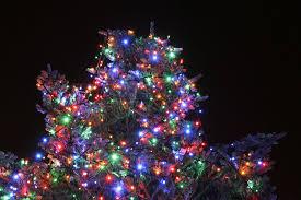 outdoor christmas tree lights large bulbs lighted christmas tree with others outdoor christmas tree lights