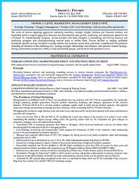 Cio Resume Examples by Cto Cover Letter Sample Cto Resume Resume Foxy Cto Sample Philip