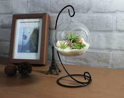 Office Desk Gift Home Decoration Office Desk Decor Terrarium Kit With Quartz