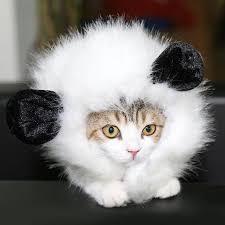 Dog Halloween Costume Lion Mane Furry Pet Costume Lion Mane Wig Cat Halloween Fancy Dress