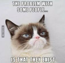 Create A Grumpy Cat Meme - she is good at rhyming 14 hilarious grumpy cat memes that will