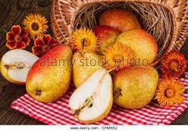 fruits thanksgiving stock photos fruits thanksgiving stock