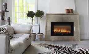 Wood Fireplace Insert by