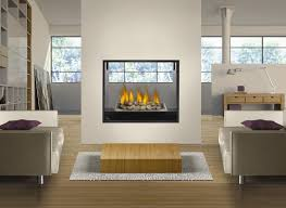 Contemporary Gas Fireplace Insert by Furniture Gas Fireplace Plans For Living Room Ideas