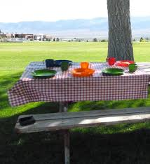 simply frugal lifestyle the gourmet picnic the key to low cost