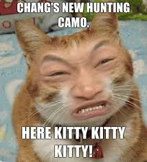 Chinese Meme Generator - cat hunter camo