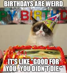 Memes For Birthdays - grumpy cat birthday meme imgflip