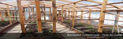 Backyard Greenhouse Diy Garden Greenhouse Building Steps Ideas Gardening Forums