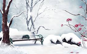 nature landscapes trees park garden bench plants winter snow