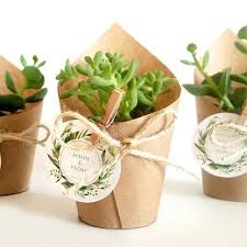 plant wedding favors succulent wedding favors easy wedding 2017 wedding brainjobs us