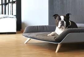 canap chien 46 ides dimages de canap lit luxe