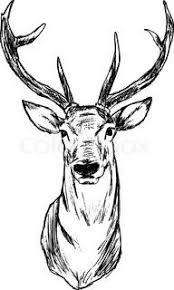 how to draw a deer head buck dear head drawing u0026 painting