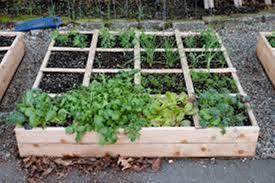 raised vegetable garden plans and designs