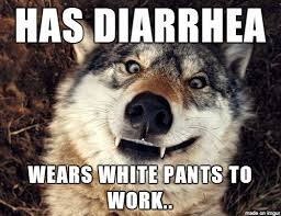 Insanity Wolf Memes - some insanity wolf memes seem more like they should be stupidity