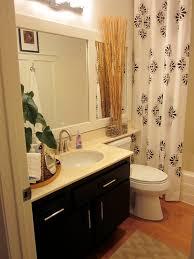 homegoods bathroom facelift