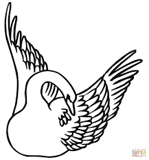 swan swimming with wings up coloring page free printable