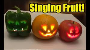 singing pumpkins no singing halloween fruit youtube