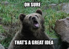 Funny Bear Memes - funny bear meme oh sure that s a great idea image bear humor for