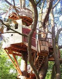 let s get the ground tree house designs for