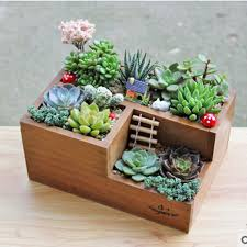Wooden Flowers Small Cute Rectangular Orchids Cacti Clay Bonsai Upside Down