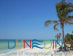 Vacation Photo Album Honeymoon Island Photo Album Dunedin Fl