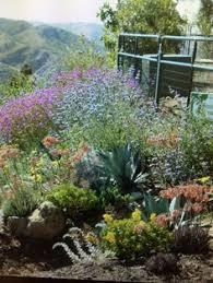 Desert Backyard Ideas Pin By Paul Dees On Desert Backyard Ideas Pinterest