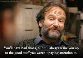 Good Will Hunting Meme - farewell letter from robin williams robins and pay attention
