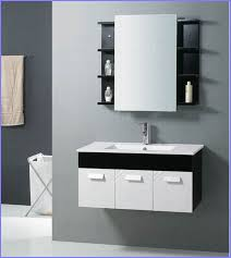 18 Vanity Cabinet 18 Deep Bathroom Vanity Cabinets Image Home Design Ideas