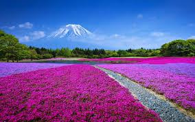 beautiful landscape mount fuji japan nature pinterest
