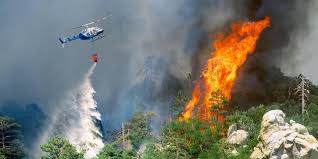 Wild Fire Danger by Bbc Earth Why We Should Let Raging Wildfires Burn
