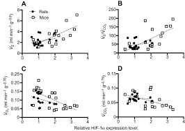 Brainstem Mass Hif1α And Physiological Responses To Hypoxia Are Correlated In